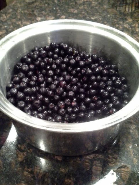 aronia berries picked through
