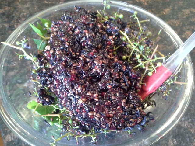 grape compost